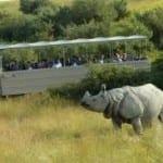 Wild Side safari park