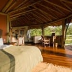 Wake up to canopy views at a treetop lodge